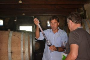 Proeven in de wijnkelder