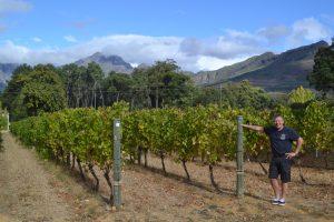 Prachtige wijngaarden, daar wordt je stil van…..