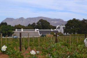 Typische Hollandse gebouwen in en rond Stellenbosch