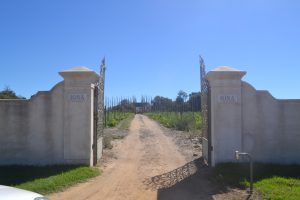 Onaangekondigd bezoek aan Iona! De Chardonnay staat op mijn wijnlijst;
